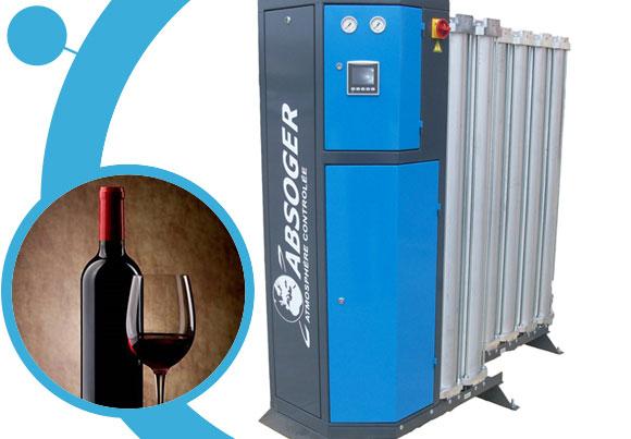 Dual outlet expandable nitrogen generators